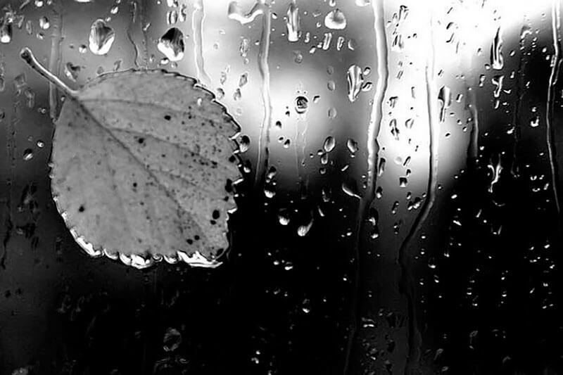 Черно-белое фото в дождь